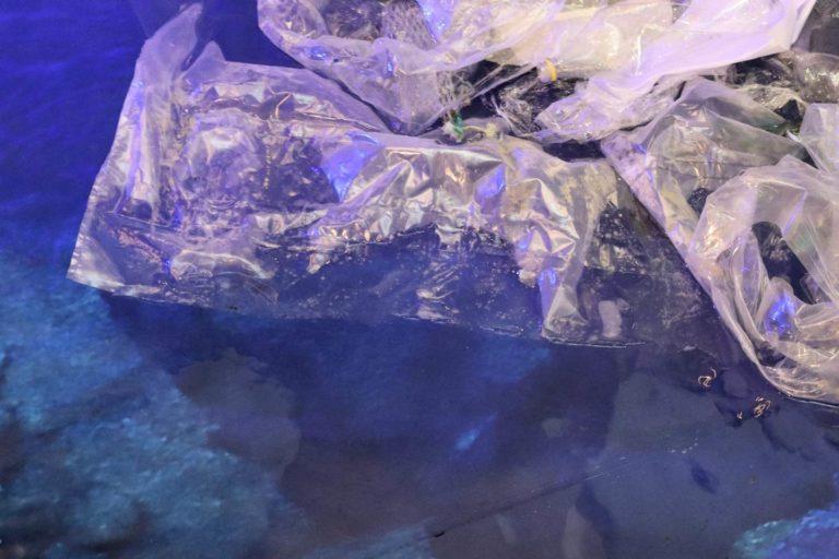 Emisja gazów (cieplarnianych) z plastiku?