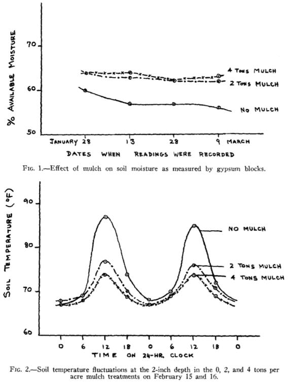 Wilgotność gleby (wyżej) oraz temperatura gleby (niżej) w funkcji czasu w zależności od obecności lub braku ściółkowania trawą