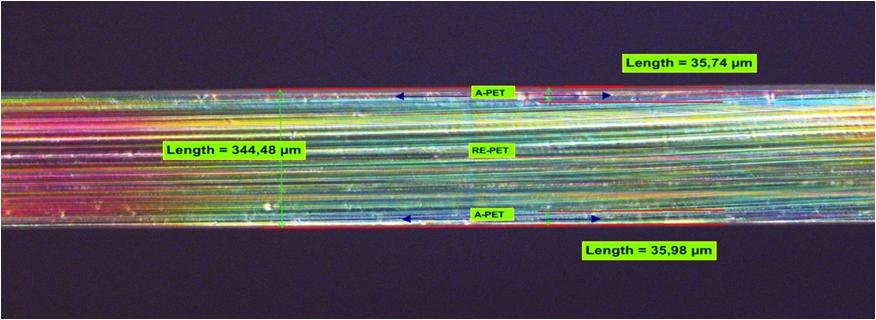 Folia ARA PET, mikroskopia w świetle spolaryzowanym