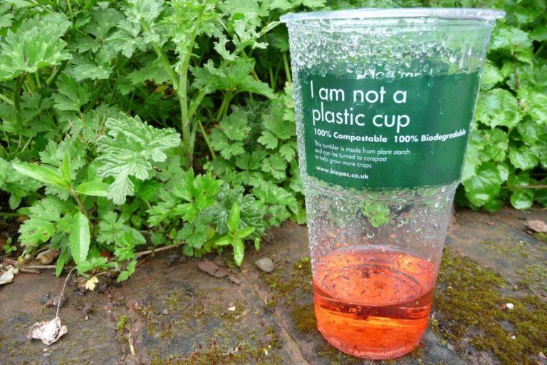 Czy tworzywa kompostowalne są ekologiczne?