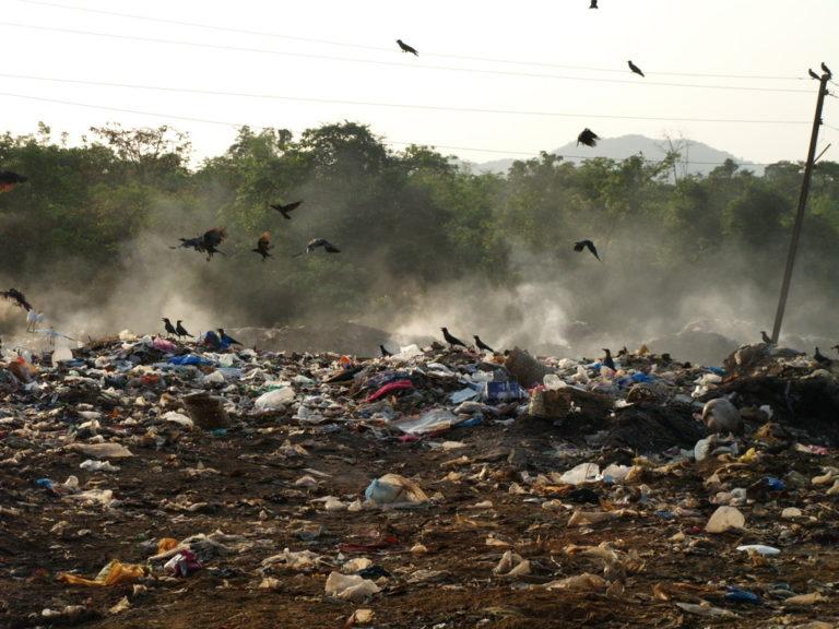 Emisja metanu – mroczna strona tworzyw biodegradowalnych